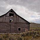 Old leaning barn  by DiamondCactus