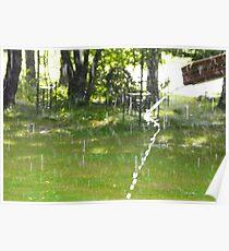Rain Drops. Poster