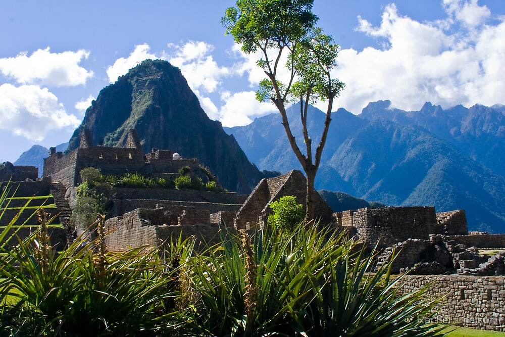 Machu Picchu at a Different Angle by Rachel  Chaikof