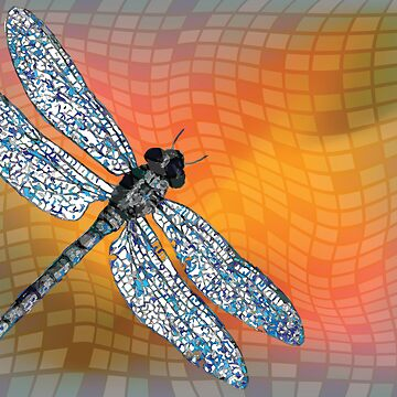 Dragon fly by robertosch