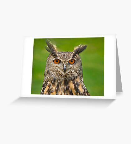 Eagle Eye Owl Greeting Card