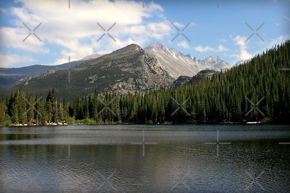 Bear Lake Beauty  by OwlBeDesigning