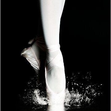 Swan lake by Dvornik