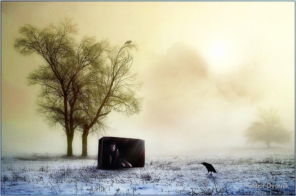 Dooms day by Gabor Dvornik