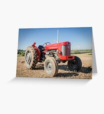 Red 65 Greeting Card