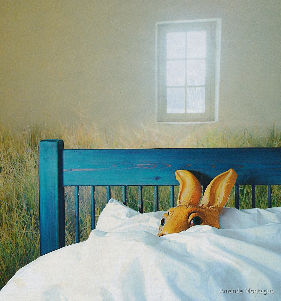 bunny in bed by Amanda Montague