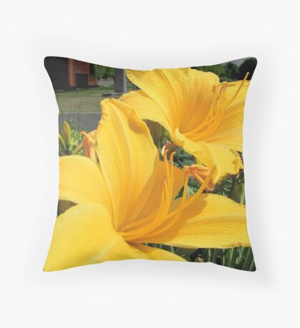 A feast for the eyes Throw Pillow