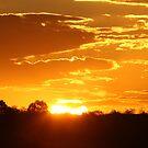Eel Cloud Sunset... von A1000WORDS