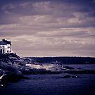 Maine by Lindsey W