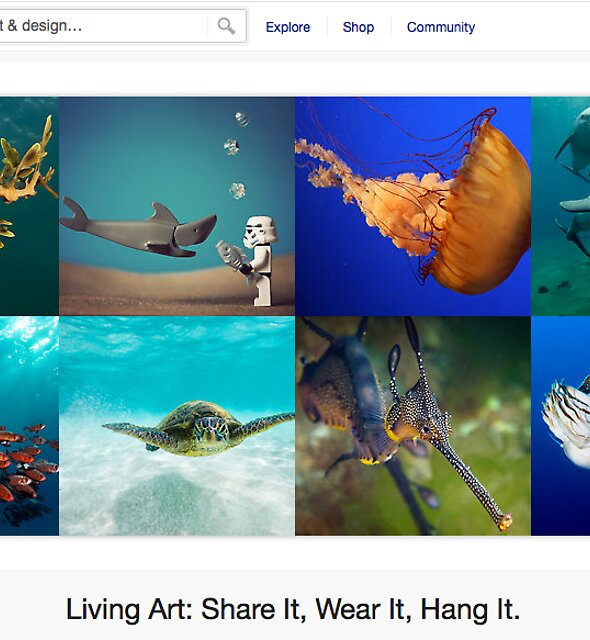 Under the Sea - 13 August 2011 by The RedBubble Homepage