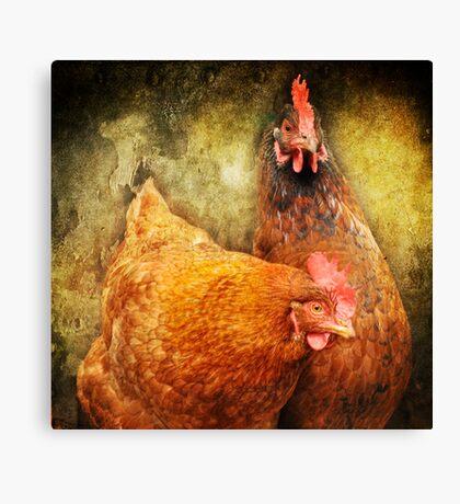 Urban Chicks ~ Canvas Print