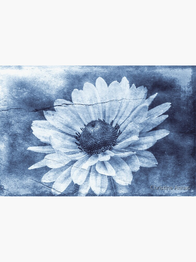 If Daisies Wore Blue Jeans by 2Bricks