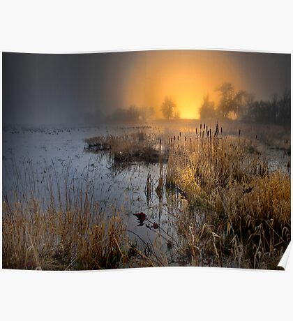 Fog Over The Duck Pond Poster