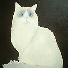 Ragdoll Cat by Joann Barrack