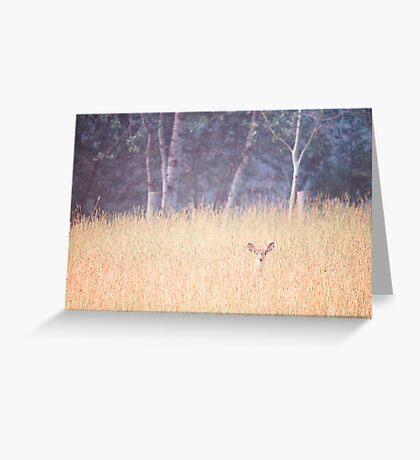 Good Morning Little Deer Greeting Card