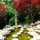 Zen Path by SilverLilyMoon