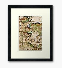 Textures - Green and white peeling paint Framed Print