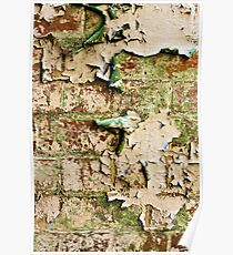 Textures - Green and white peeling paint Poster