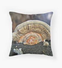 Fuzzy Turkey Tail Shelf Fungus - Trametes ochracea Throw Pillow