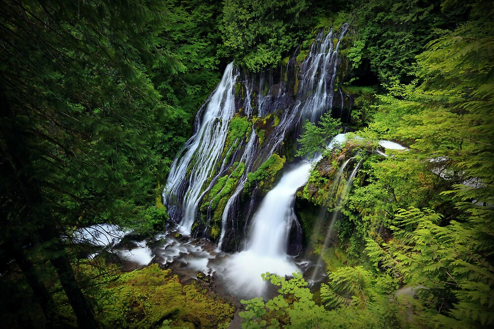Panther Creek Falls I by Tula Top