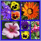 Singing of Summer - Floral Collage by BlueMoonRose