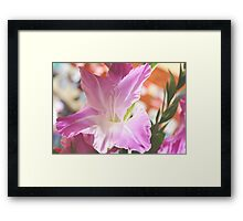 Just the right amount of sun... Framed Print