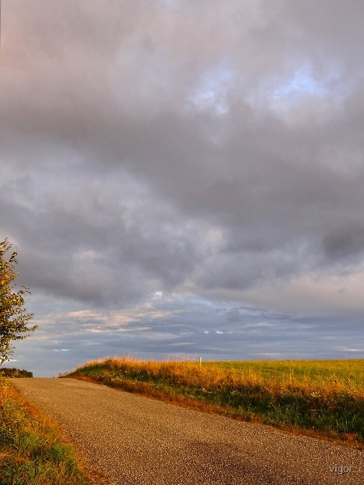 Going down a country road by vigor