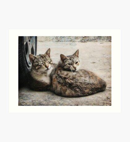 Don't look now, honey. But somebody's watching us... Art Print