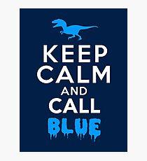 Behalte Ruhe und rufe Blau   Raubvogel Fotodruck