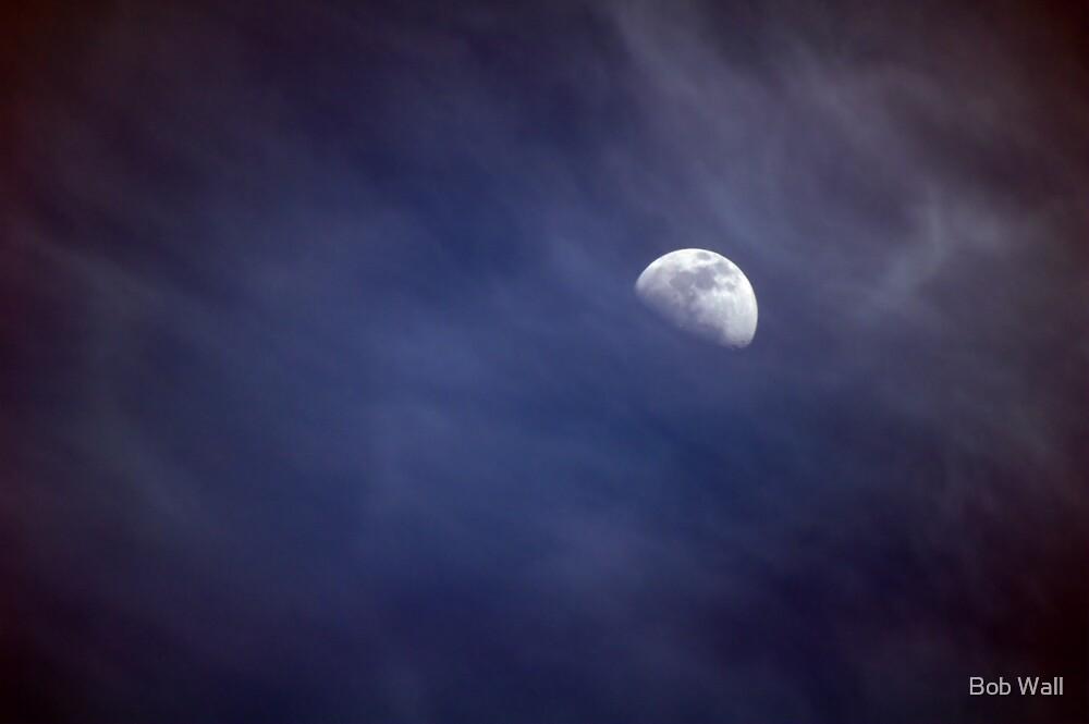 Half Moon Over San Francisco by Bob Wall