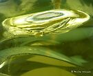 Everyday objects - Fairy washing up liquid by Photos - Pauline Wherrell