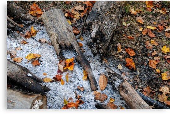 Autumn Ashes by Nubit