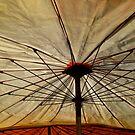 Parasol by almulcahy
