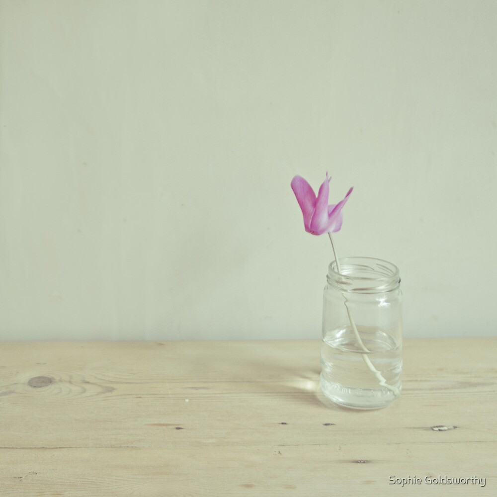Simple things by Sophie Goldsworthy