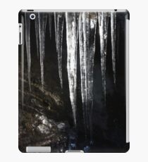 Ice iPad Case/Skin