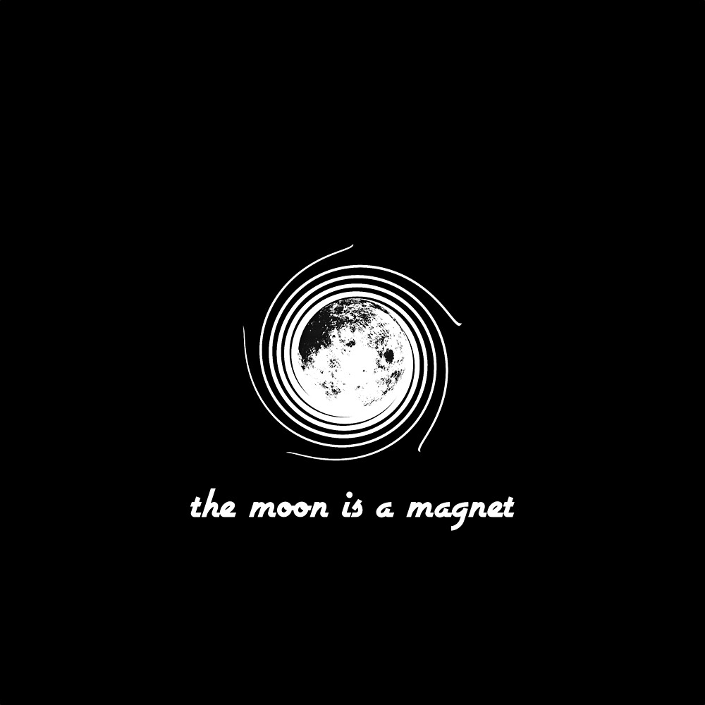 The Moon Is A Magnet by Michael Ritter