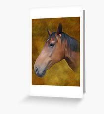Brown Horse painting Grußkarte