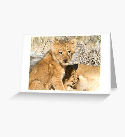 Lunch ! Have You Had Yours? Greeting Card