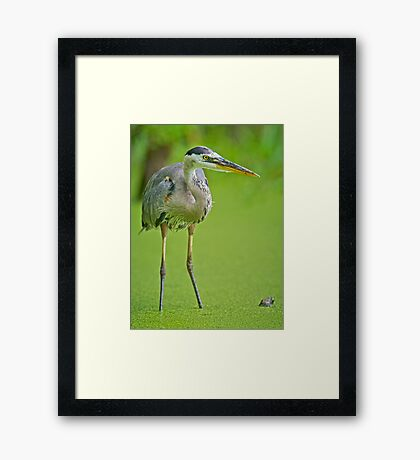 In Close Framed Print