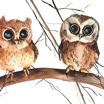 Baby Owls by wendish