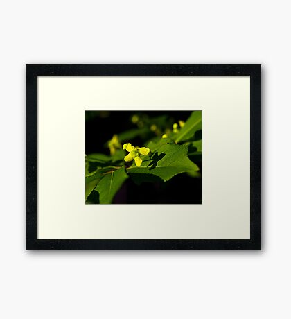 Plant with a Face Framed Print