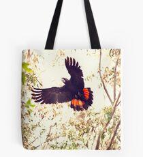 Red tail Black Cockatoo, Perth Western Australia Tote Bag