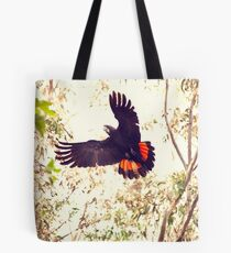 Red tail Black Cockatoo, Perth Western Australia Tote Bag