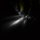Light in the darkness by Elizabeth McPhee