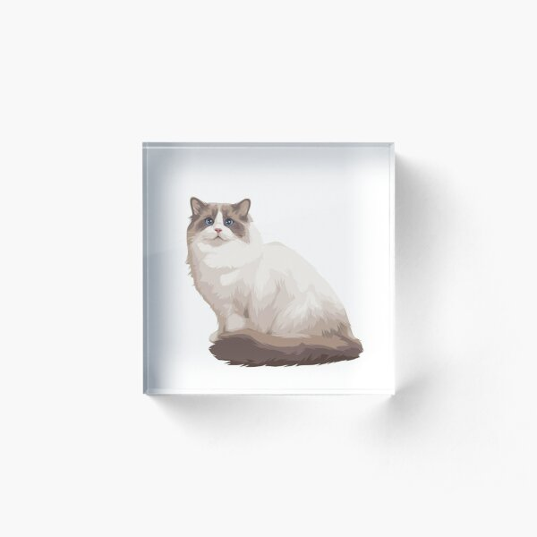 Ragdoll kitty Blue bicolor Acrylic Block