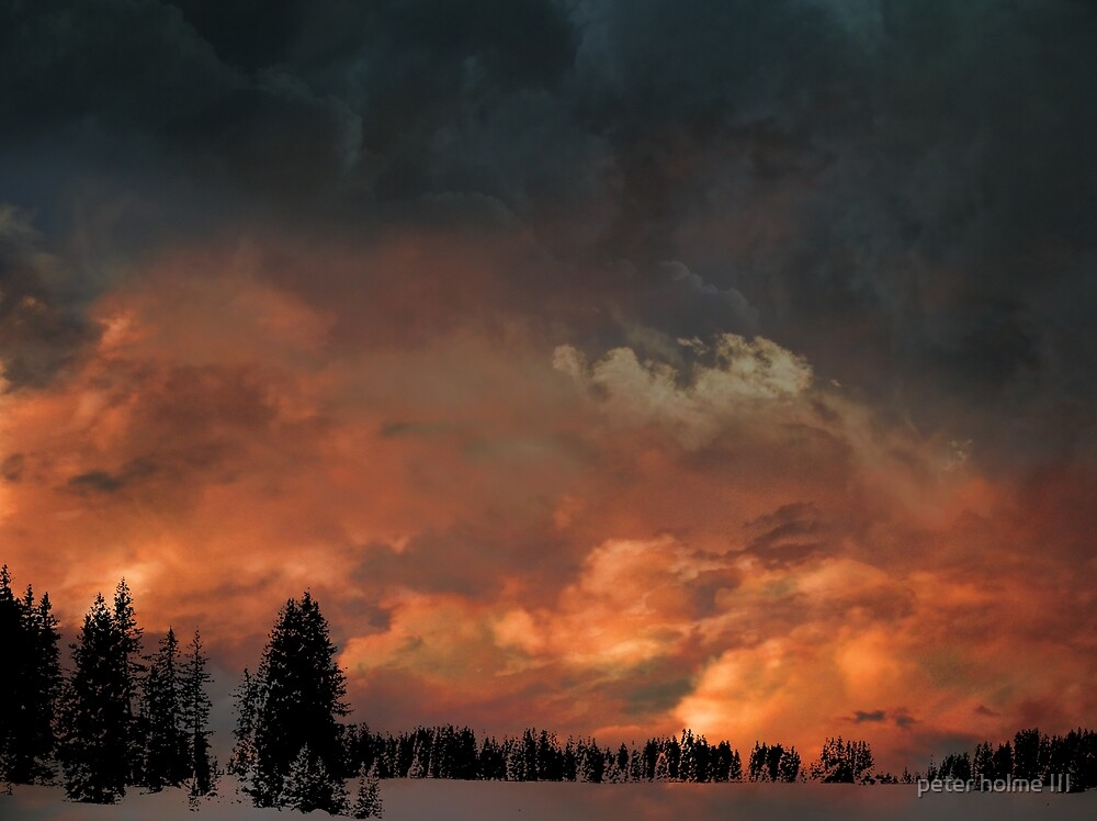 4017 by peter holme III