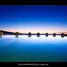 Ross Jones Memorial Pool by JayDaley