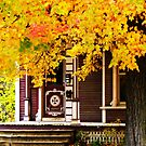 Fall Canopy Over Victorian Porch by Rodney Lee Williams