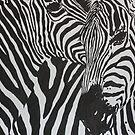 Zebras by wendish