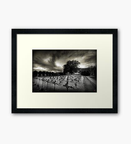 I will protect you Framed Print